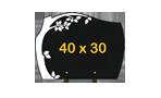 plaque-arbre-40x30